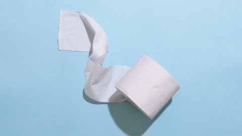 A piece toilet paper roll on a light blue background